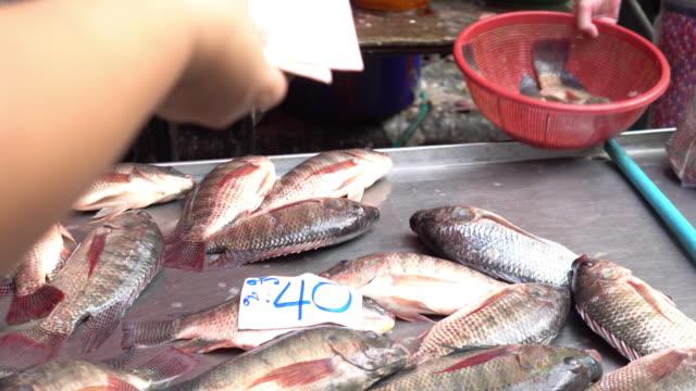 Fisch zum Verkauf am Fischmarkt