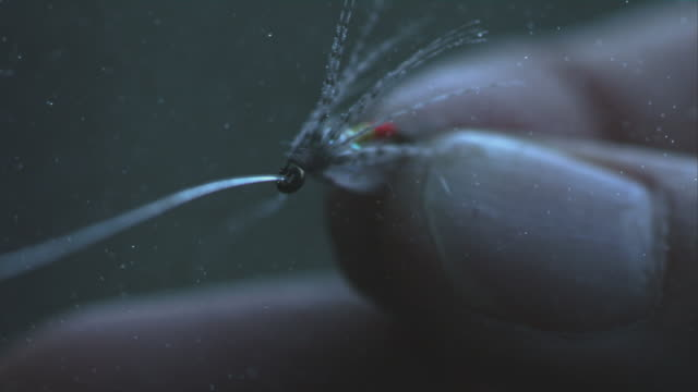 Fish Hook Mist Slow Motion