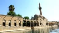 Vissemeren (Balikli Gol), Sanliurfa, Turkije