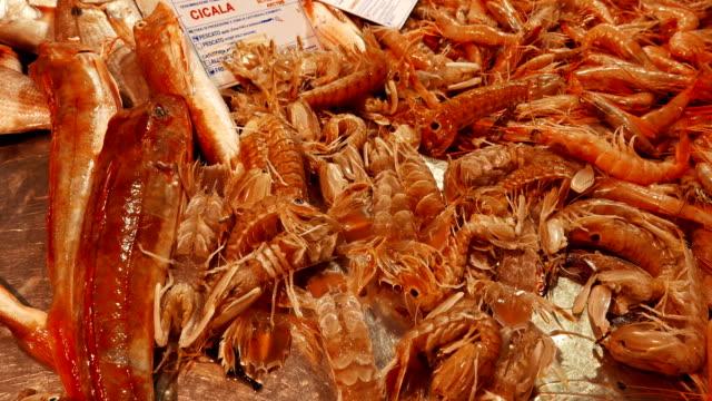 Fish market in Civitavecchia, Italy