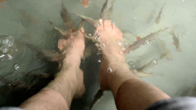 Fish Spa Skin Treatment