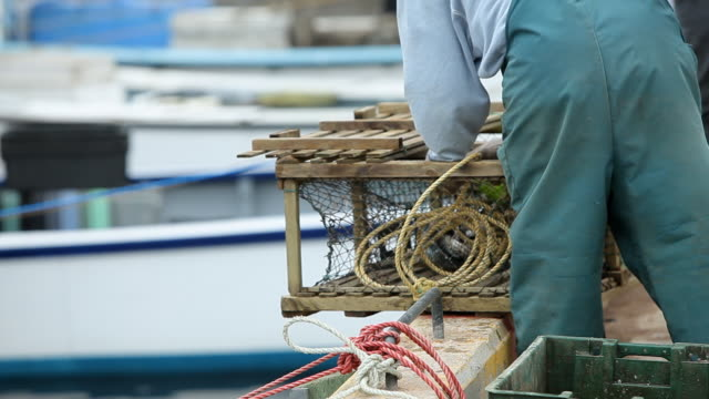 A fisherman prepares the lobster trap and puts the box in the water with a rope