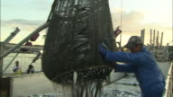 A fisherman unloads saury from a net onto a dock.
