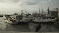 Fisherman's port with regional wooden boats