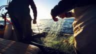 Fishermen at work: industrial professional fishing