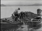 Fishermen pulling nets with fish out of the water Fishermen pulling nets with fish out of the water on January 01 1927