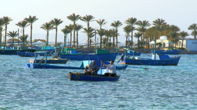 WS Fishermen sitting in boat at red sea bay with palm trees in background / Hurghada, Red Sea coast, Egypt