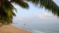 Fishing boat at palm tree beach