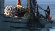 A fishing boat hauls up a net of salmon at Prince William Sound, Alaska.