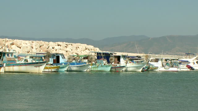 MS Fishing boats docked in harbour / Latchi, Cyprus