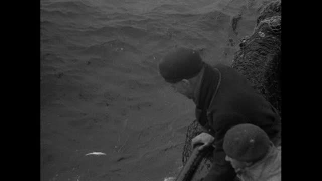 1934 Fishing Trawler in the North Sea