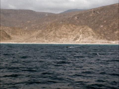 Five British engineers shot dead by gunmen ITN LIB Rocky coast TRACK patrol boat RL BV Machine gun on boat GV Coast and beach LloydRoberts with Ross...
