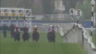 SLO MO WS Five jockeys on horses running out of gates during race at Newbury Racecourse / Newbury, England, UK