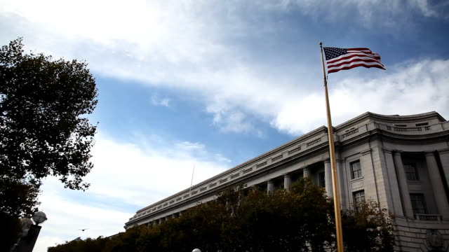 Flag And Government Building