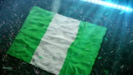 Flag of Nigeria at the stadium
