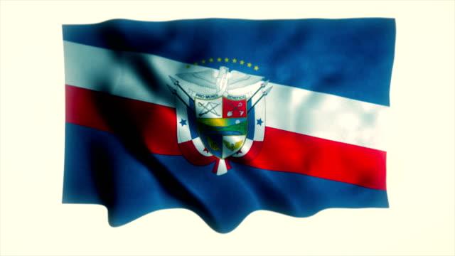 Flag of Panama, Panamanian Flag