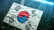 Flag of South Korea at the stadium