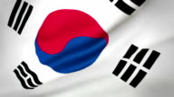 Flag of South Korea Loopable