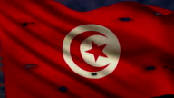 Flag of Tunisia, struggle for freedom