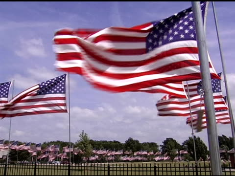 Flags blowing on Memorial Day