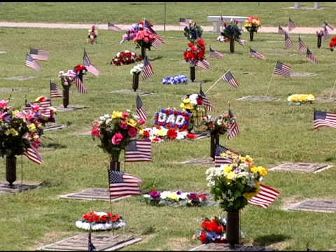 Flags in Cemetery - Memorial Day