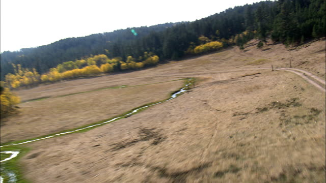 Flight Over Autumn Colors In Black Hills  - Aerial View - Wyoming, Weston County, United States