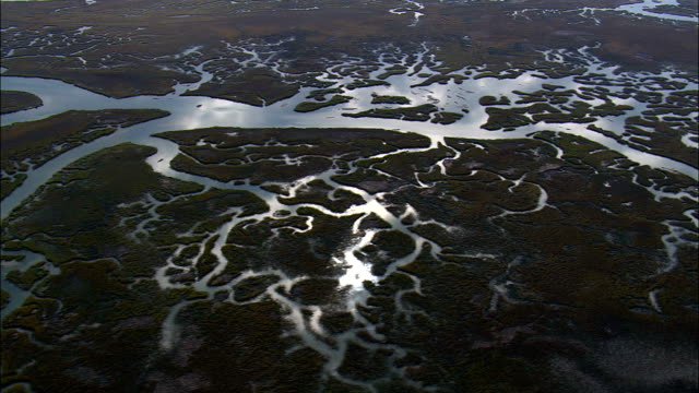 Flight With Reflections In Salt Marsh Creeks  - Aerial View - South Carolina,  Charleston County,  United States