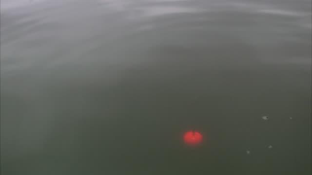 Float on water, Sweden.