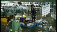 Flooding leaves crisis of unemployment THAILAND Ayitthya Rojana industrial estate EXT Various shots of flooded industrial estate Factories partially...
