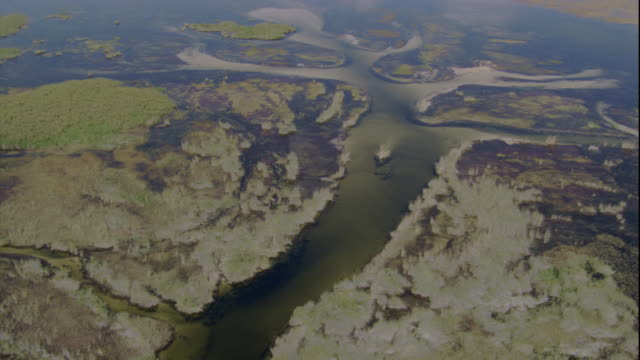 Flood waters form snaking rivers across the Okavango Delta. Available in HD.