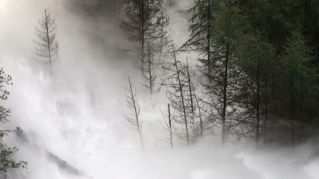 HD Flood Waves Destroying Forest