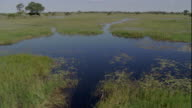 Floodwaters flow into the savannas of Okavango Delta, Botswana during the wet season. Available in HD.