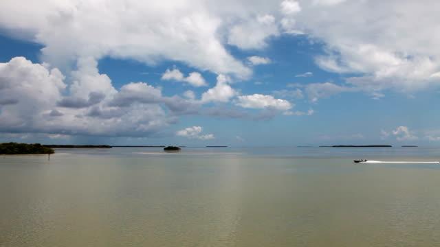 Florida Everglades Timelapse