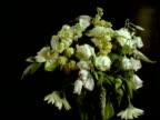 T/L Flower Bouquet dies, white flowers wilt