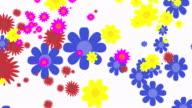 Flower Explosion Background
