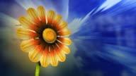 3D flower opening