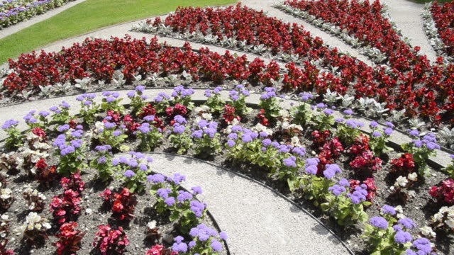 MS PAN Flowers in Ornamental garden at Schloss Linderhof castle, built by King Ludwig II of Bavaria / Oberammergau, Bavaria, Germany