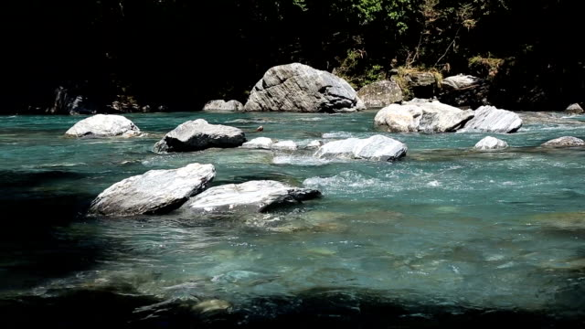 Flowing River in New Zealand