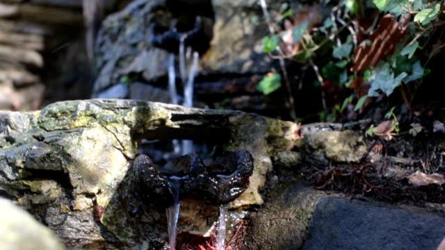 Flowing Spring Water