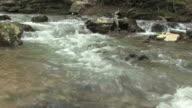 Flowing Stream in HD