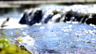 Flowing water and bokeh of a canal