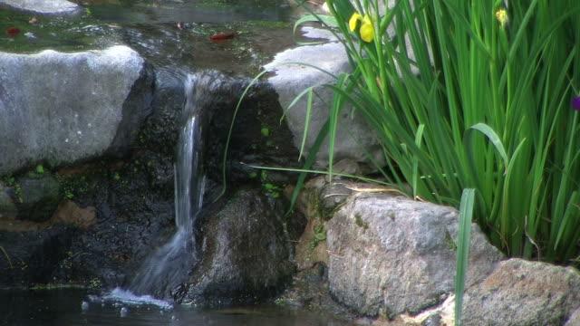HD: Flowing water in Japanese garden (video)