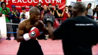 Floyd Mayweather at open training session ahead of fight against Juan Manuel Marquez More of Floyd Mayweather boxing during open training session...