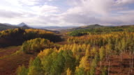 EPIC fly down aspen tree grove, Aerial, Aspen Trees, Foliage, Mountains, Beautiful Colors, Changing leaves, Colorado, Aerial, Stock Video Sale 4K Nature/Wildlife/Weather Drone aerial video