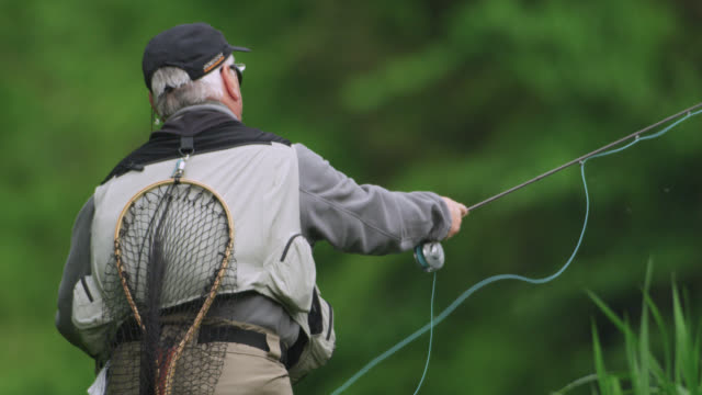 Fly fisherman casts fly onto river, Wiltshire, England
