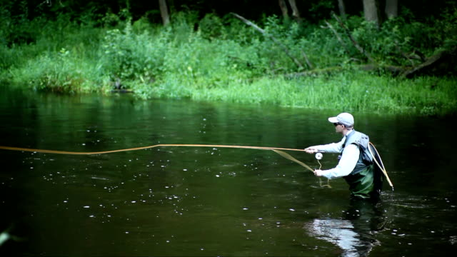 Fly fishing #3