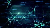 Fly Through a Digital Brain