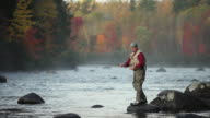 WS Fly-fisherman fishing in river / The Forks, Maine, USA