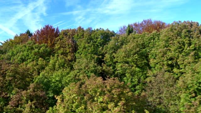 Fliegen über Herbst