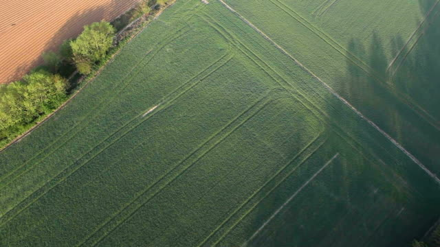 Flying over fields - Farmland HD